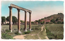 04 - RIEZ-LA-ROMAINE (Basses-Alpes) Alt. 520 M. - éd. Photoguy N° C 792 Colorisée - France