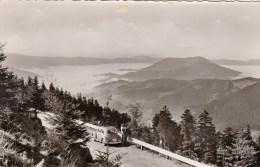 Forêt Noire - Blick Auf Das Nebelmeer Von Der Schwarzwald-Hochstrasse - Deutschland