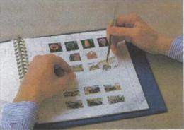 OLANDA NEDERLAND   25 DIFFERENT USED STAMPS FOR START COLLECTION OR CHANGE - Alla Rinfusa (max 999 Francobolli)