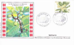 MONACO, Les Quatre Saisons Du Bibassier (Néflier Du Japon), Printemps, Dessin G.P. Teytaud, FDC, 23/05/1985 - FDC