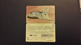 Brasil-LOBINHO-used Card - Dogs