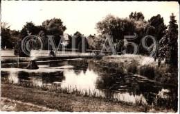 Hazebrouck. Le Jardin Public. Editeur Combier. 1967. - Hazebrouck