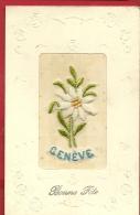 DJA-03  Carte Brodée Edelweiss Et Genève, Bonne Fète.  Circulé Sous Enveloppe En 1915 - Brodées