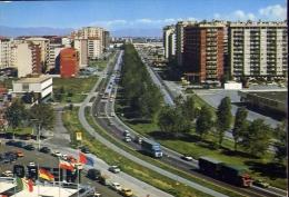 Cinisello Balsamo - Viale Pulvio Testi - 52445 - Formato Grande Non Viaggiata - Cinisello Balsamo