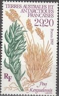 TAAF 1997 Yvert 220 Neuf ** Cote (2015) 13.00 Euro Flora Poa Kerguelensis - Neufs