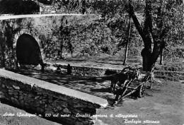 "01086  ""ARITZO (NUORO) M. 850 LOCALITA' MONTANA DI VILLEGGIATURA - BARBAGIA PITT."" ANIMATA.  CART. POSTALE. SPEDITA 1961 - Italia"