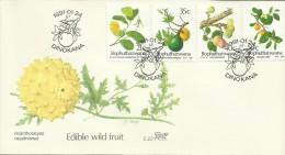 South Africa Bophuthatswana 1991 Edible Wild Fruits FDC - Bophuthatswana