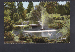 VICHY - LE GRAND PARC - BASSIN AUX CYGNES - Vichy