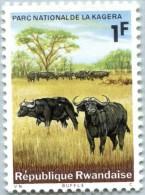 N° Michel 108A (N° Yvert 102) - Timbre Du Rwanda (MNH) (1965)  - Cape Buffalos (JS) - 1962-69: Neufs