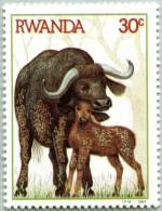 N° Michel 1284 (N° Yvert 1158) - Timbre Du Rwanda (MNH) (1984)  - Zebus (JS) - Rwanda