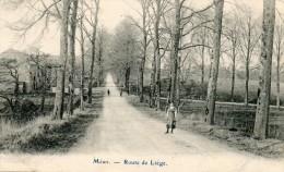 Havelange - M�an - Route de Li�ge - Ed. Roumache-Urbain - Desaix - Impeccable