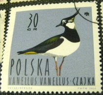Poland 1964 Waterfowl Birds Vanellus Vanellus 30gr - Used - 1944-.... République
