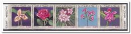 Nicaragua 1967, Postfris MNH, Flowers - Nicaragua