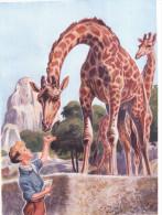 """Chromo """"L´Ami Chez Les Bêtes"""" - Girafe IMA - Vieux Papiers"""