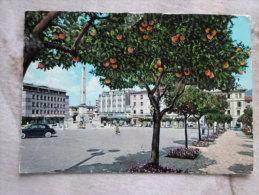 Italia  MASSA - Piazza Aranci  1950-60  D125648 - Massa