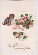 CARD CANE BASSOTT0 - BASSET SAUS-SAGE DOG MAIALINO FUNGO QUADRIFOGLIO FERRO DI CAVALLO BUON ANNO  -FP-N-2-0882 22875 - Hunde