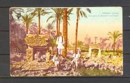 1916 LIBIA ITALIANA, TRÍPOLI, FAMIGLIA DI BEDUINI NELL´OASI, ESCRITA, FAMILIA DE BEDUINOS EN EL OASIS, RARA PIEZA - Libia