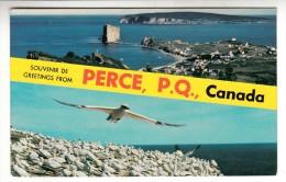 Canada - Souvenir De Percé, P.Q - Greetings From Percé, P.Q - Percé