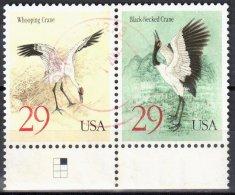 United States 1994 Black-necked And Whooping Crane - Sc # 2867-68 - Mi.2504-505 - Horizontal Pair - Used - Blocks & Sheetlets