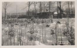 AK Gasthaus Siebensäure Im Winter Erzgebirge Bei Neudorf Sehmatal Crottendorf Bärenstein Sehma Annaberg Oberwiesenthal - Sehmatal