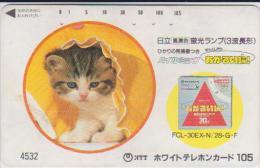 @CATS-011 - Gatos
