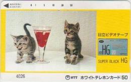 @CATS-016 - SUPER BLACK HG - Gatos