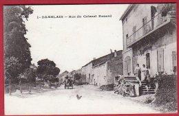 88 DAMBLAIN - Rue Du Colonel Renard - Andere Gemeenten