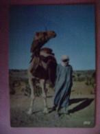 CPM AFRIQUE - TCHAD  N�5427 CHAMELIER