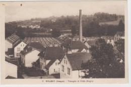 Golbey.  (Vosges ). Tissages Et Cités Ziegler. - Golbey