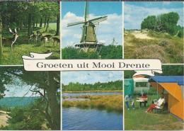 NL.- Groeten Uit Mooi Drente. Molen. Tent. Caravan. Herten. Reeen.  2 Scans - Gruss Aus.../ Gruesse Aus...
