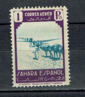 SPAIN ESPAGNE SPANISH SAHARA 1943  CAMEL  Camels Caravan - Spanish Sahara
