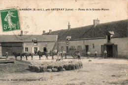 DAMBRON PRES ARTENAY FERME DE LA GRANDE MAISON - France