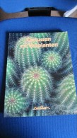 BOEK CACTUSSEN EN VETPLANTEN PHILIP PERL DE LANTAARN B512 - Livres, BD, Revues