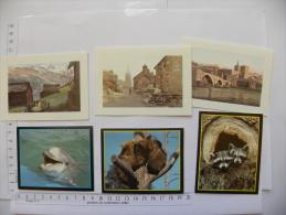 6 Petits Calendriers ANGERS (49) Maine Et Loire - Pharmacie Jean Delage 1990 - Petit Format : 1991-00