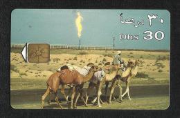 United Arab Emirates UAE Used Phonecard Communication Tele Telephone Camel Animal - Phonecards