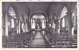 DEERLIJK : St. Columba Kerk - Binnenzicht - Deerlijk