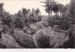 ZWARTBERG / MONT-NOIR : Sentier Des Amoureux - Genk