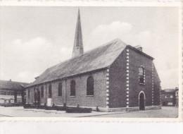 DEERLIJK : St. Columba Kerk - Borstbeeld - Deerlijk