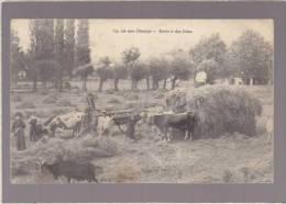 Agriculture - La Rentrée Des Foins - Attelage Boeufs - Chevres -  Vie Aux Champs - Voir état - Equipaggiamenti