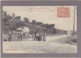 Pyrenees Orientales - Romanichels Descendant Du Col Du Perthus - Attelage - 441 Labouche - Mauvais Etat - Ohne Zuordnung