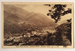 Valle Pesio Chiusa Pesio Borgata Vigna Spedita Nel 1950 F.p. - Cuneo
