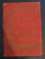 Ricordo Del Pellegrinaggio A Sant Antonio Di Padova - Livres, BD, Revues