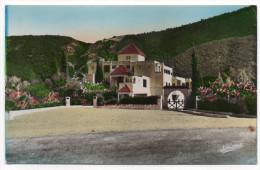 """Alg�rie--BLIDA--Gorges de la Chiffa-- """"Le Rocher des Singes"""", cpsm couleur 14 x 9 n� 35  �d Jomone"""