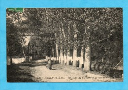 Orsay ( Essonne ). - Chemin De L´Yvette Et Le Viaduc. - Orsay
