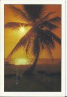 Playa Bavaro - Dominicaanse Republiek - Postkaarten