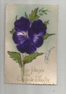 Cp , FLEUR , Velours , Militaria , UNE PENSEE DU CAMP DE MAILLY , écrite 1934 - Cartes Postales