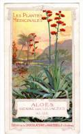 Chromo Chocolat Aiguebelle : Les Plantes Médicinales, Aloès - Aiguebelle