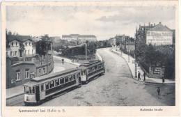 AMMENDORF Bei HALLE Sche Strasse Straßenbahn Tram 8.5.1928 S Weiss Markt Herren Konfektion Gelaufen - Halle (Saale)