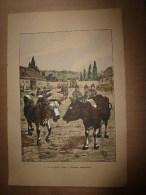 1914   Affichette Cynique-comique De G. Vignal (hors Tout 47cm X 32cm) On Les Appelle Vaches !.protestons énergiquement - Prints & Engravings