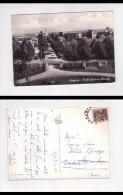 Cartolina/postcard Argenta (Ferrara) Viale Gustavo Bianchi 1962 - Ferrara